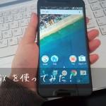 EXPANSYS(エクスパンシス)で購入したスマートフォン(Nexus 5X)を開封。