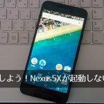 Nexus 5Xが無限ループ ⇒ EXPANSYS(エクスパンシス)へ返品修理。